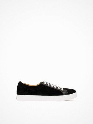 Polo Ralph Lauren Drew Sneakers Shoe Svart