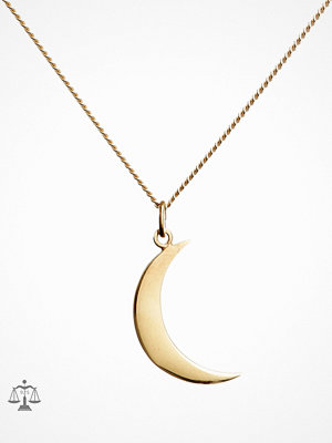 Blue Billie smycke Big Moon Charm Guld