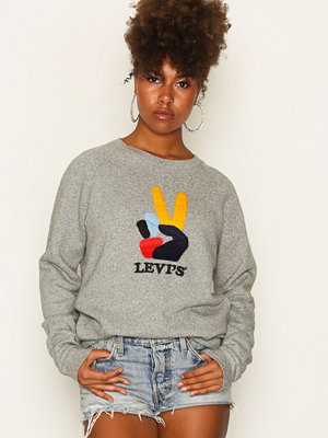 Tröjor - Levi's Relaxed Graphic Crew