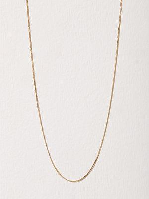 Blue Billie halsband Curb Chain 60cm Guld