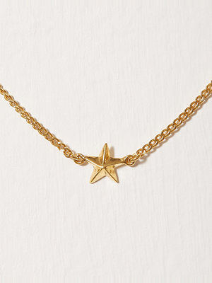 Blue Billie armband Star Curb Bracelet Guld