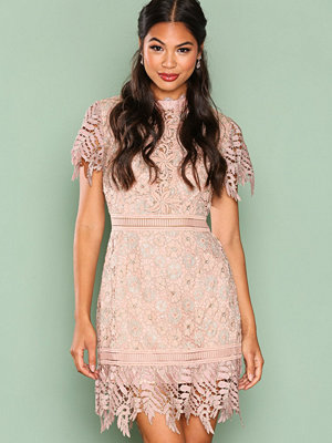 True Decadence Short Sleeve Lace Dreamy Dress Gold