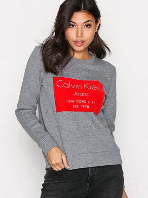 Calvin Klein Jeans Hansi Cn Hwk L/S Grey