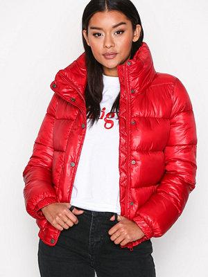 Jacqueline de Yong Jdyroona Cropped Jacket Otw Röd bomberjacka