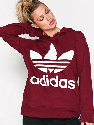 Adidas Originals Trefoil Hoodie Burgundy