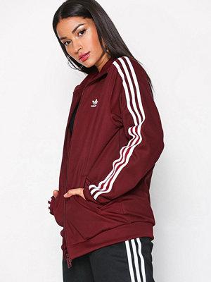 Street & luvtröjor - Adidas Originals Contemp BB TT Burgundy