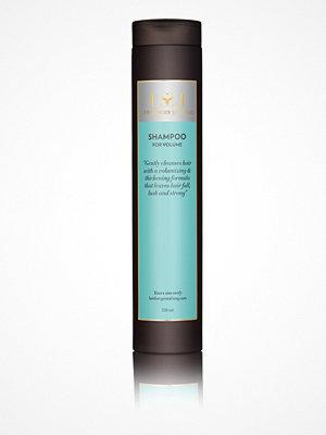 Hårprodukter - Lernberger Stafsing Shampoo for Volume 250 ml Vit