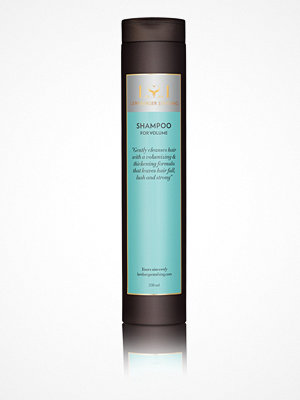 Hårprodukter - Lernberger Stafsing Shampoo Volume 250 ml