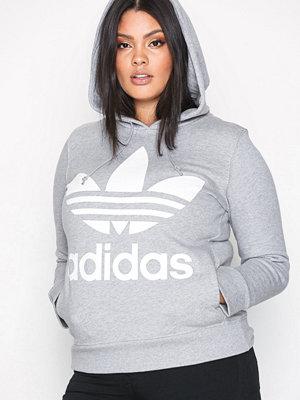 Street & luvtröjor - Adidas Originals Trefoil Hoodie Grå