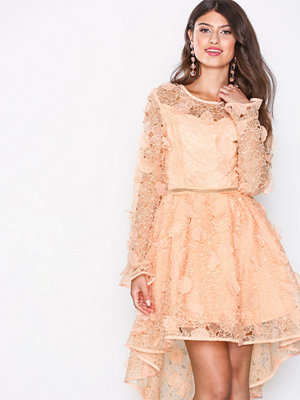 True Decadence Lace Skater Dress Peach