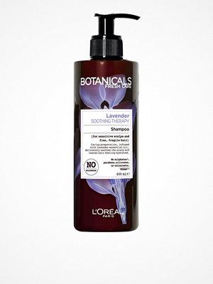 Hårprodukter - L'Oréal Paris Botanicals Lavender Shampoo 400ml Transparent