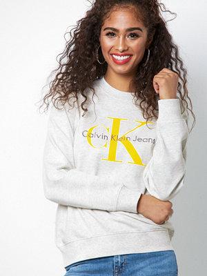 Calvin Klein Jeans Honora True Icon CN HWK Grey