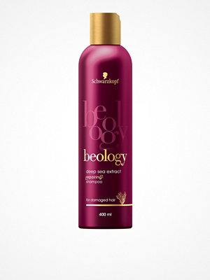 Hårprodukter - Schwarzkopf Beology Repair Shampoo 400 ml Transparent
