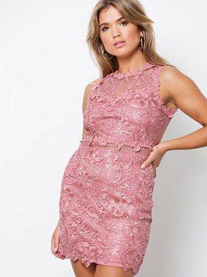 Missguided Lace And Mesh Bodycon Dress Rose