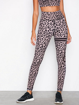 Aim'n Cheetah Tights Black