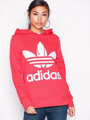 Adidas Originals Trefoil Hoodie Korall