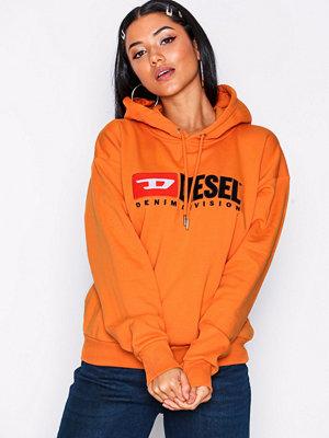 Street & luvtröjor - Diesel F-Division FL Sweat Shirt Pumpkin