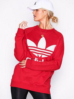 Adidas Originals Oversized Sweat Röd