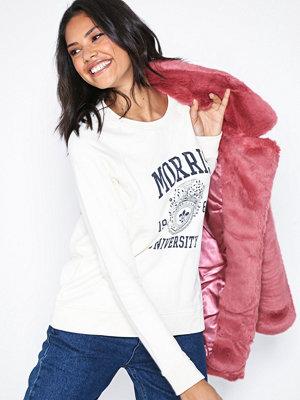 Morris Ivy Sweatshirt Offwhite