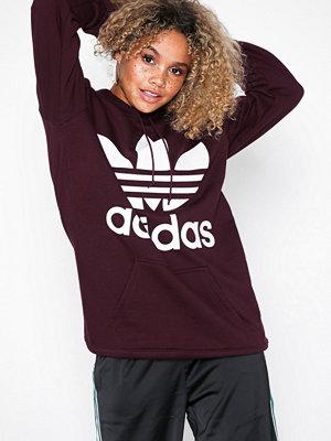 Adidas Originals Bf Trf Hoodie Maroon