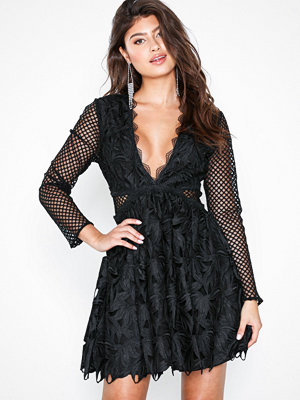 True Decadence Mesh Sleeve Lace Dress Black