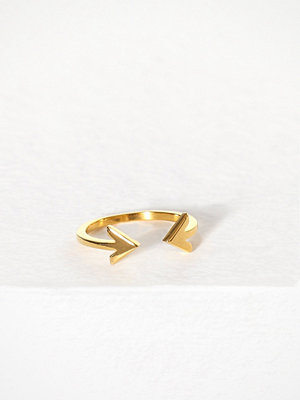 Syster P Strict Plain Double Arrow Ring