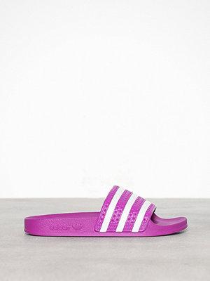 Tofflor - Adidas Originals Adilette W