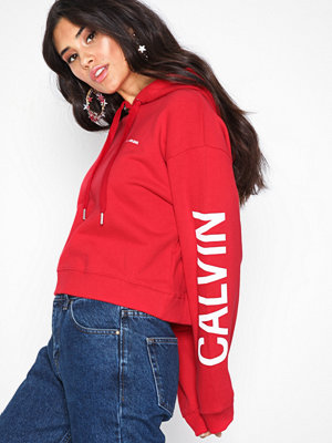 Street & luvtröjor - Calvin Klein Jeans Cropped Institutional Hoodie