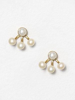 Cornelia Webb örhängen Pearled Spider Earring - Pair Guld