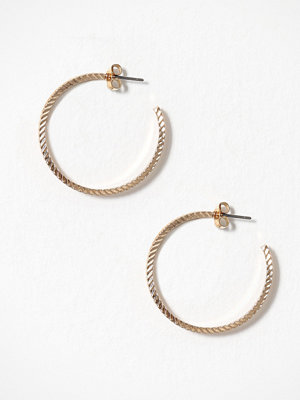 Pieces smycke Pcsandra Hoop Earrings Box Guld