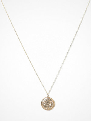 Pieces halsband Pcdunia Necklace D2D Guld