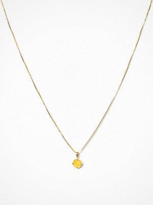 Caroline Svedbom halsband Classic Petite Necklace Gul