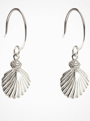 Syster P smycke Beaches Shell Earrings