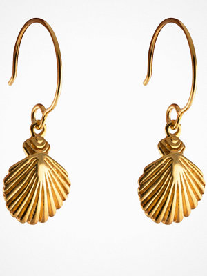 Syster P örhängen Beaches Shell Earrings