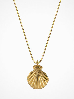 Syster P halsband Beaches Shell Necklace