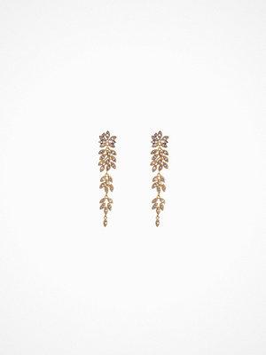 Lily and Rose örhängen Petite Laurel Earrings Multicolor