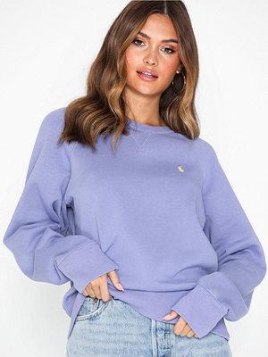 Polo Ralph Lauren Ls Ragln Po-Long Sleeve-Knit Blue