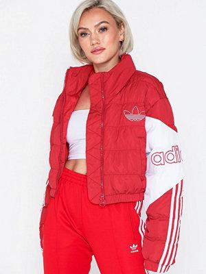 Adidas Originals röd bomberjacka Cropped Puffer