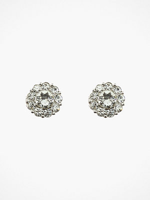 Lily and Rose örhängen Petite Miss Sofia Earrings Silver