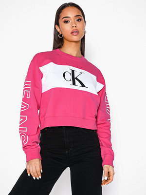 Calvin Klein Jeans Blocking Satement Logo Crew Neck