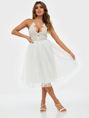 Rare London Lace Panel Midi Dress