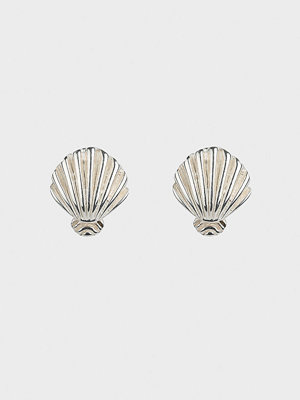Syster P örhängen Beaches Shell Stud Earrings