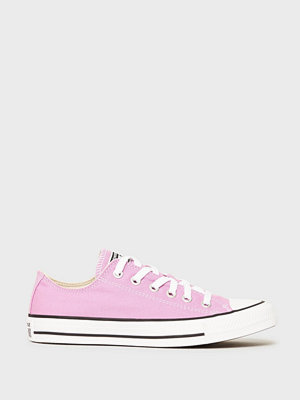 Converse All Star Canvas Ox Peony