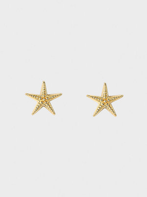 Syster P örhängen Beaches Starfish Stud Earrings