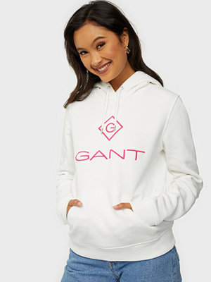 Gant D1 COLOR LOCK UP HOODIE