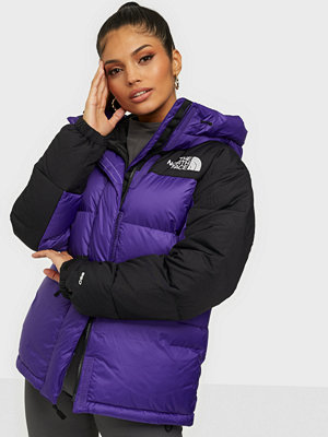 The North Face W Hmlyn Down Parka