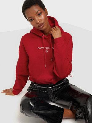 Calvin Klein Jeans INST ROUND CK HOODIE
