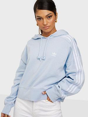 Tröjor - Adidas Originals SHORT HOODIE