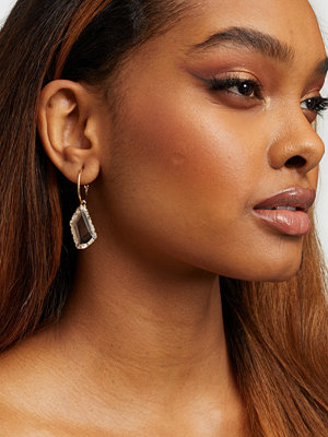 NLY Accessories smycke Stunning Earrings