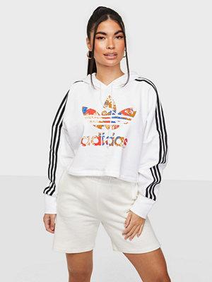 Adidas Originals BOXY HOODIE